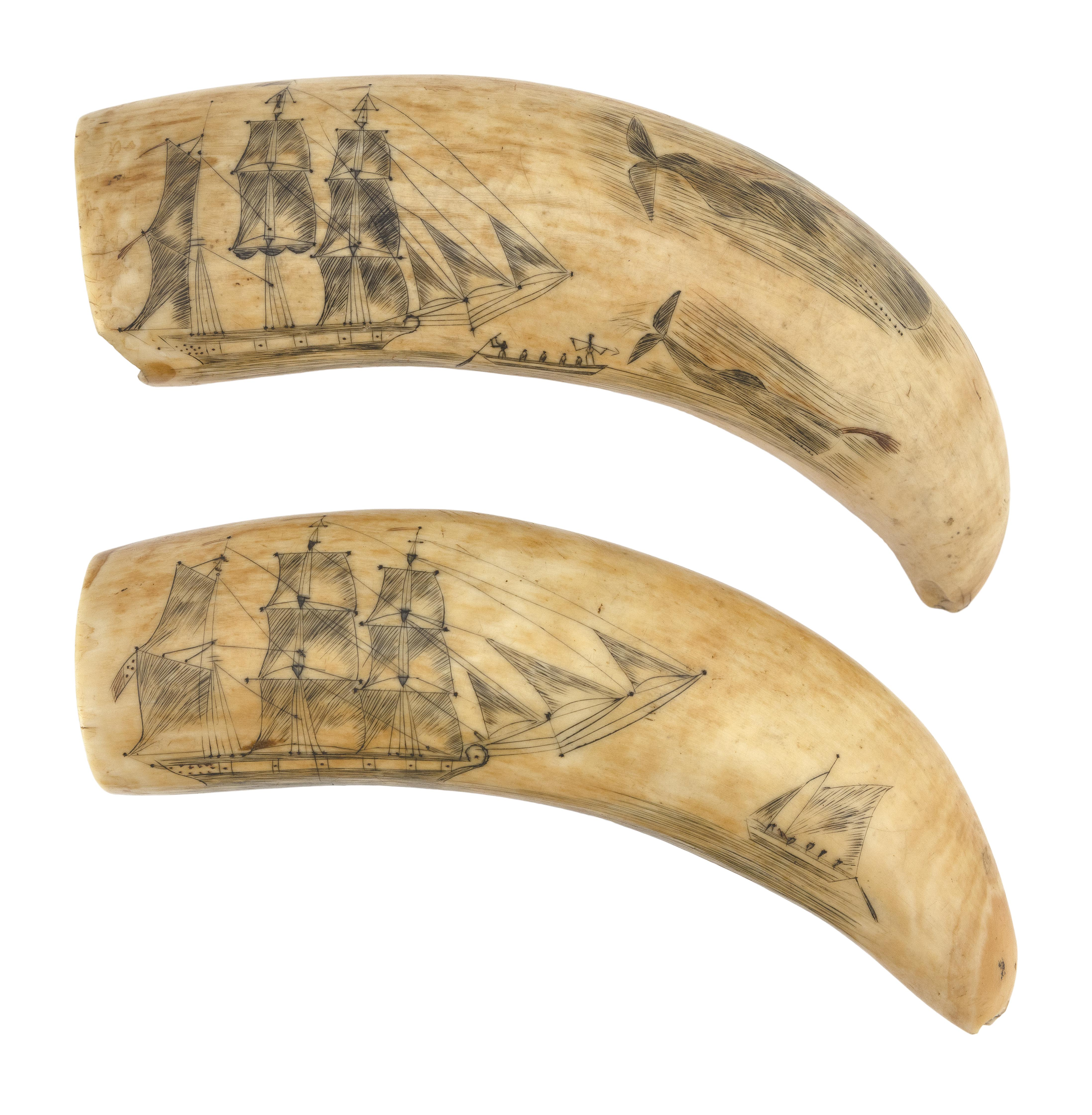 PAIR OF POLYCHROME SCRIMSHAW WHALE'S TEETH WITH WHALING SCENES Circa 1840 Lengths approx. 6.25